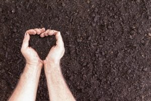 Pair of hands holding soil in heart shape over bare ground with copy space for concept about hobbies and the love of gardening
