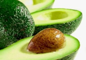 avocado seed | Unify Health