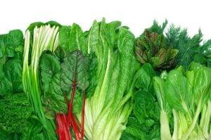 leafy greens | Unify Health